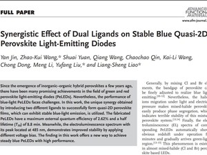 Synergistic Effect of Dual Ligands on Stable Blue Quasi‐2D Perovskite Light‐Emitting Diodes 《Advanced Functional Materials》