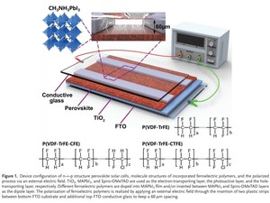 Polarized Ferroelectric Polymers for High Performance Perovskite Solar Cells 《Advanced Materials》